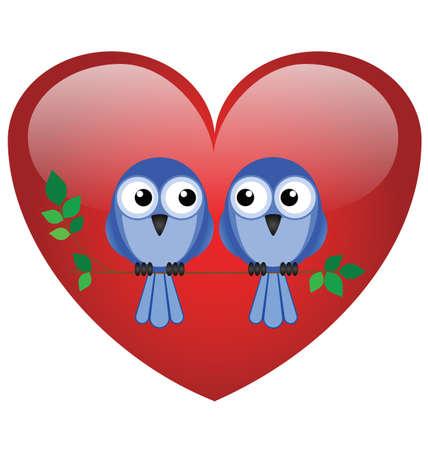 animal limb: Two valentine lovebirds sat on a branch
