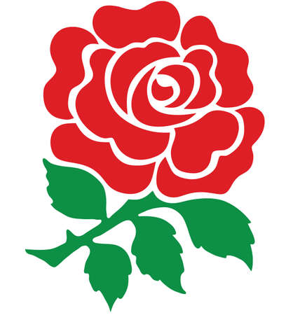 Red Rose national emblem of England isolated on white background  イラスト・ベクター素材