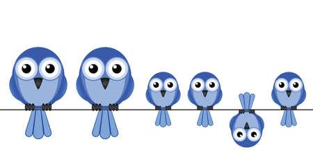 흰색 배경에 고립 된 큰 새 가족