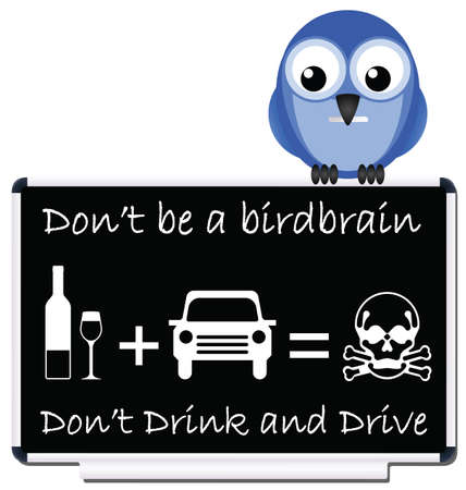 drinking and driving: Do not be a birdbrain drink and drive message Illustration
