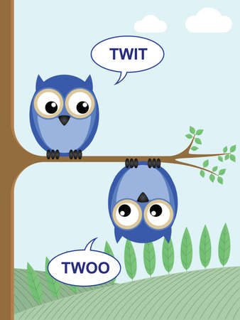 twit: Two owls calling twit twoo to each other Illustration