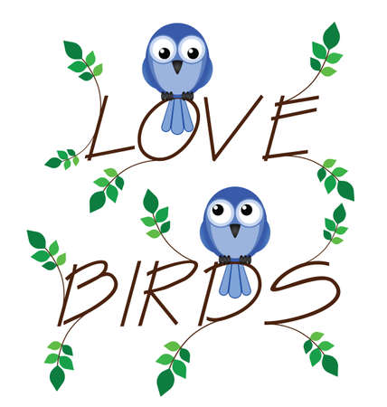 Love bird twig text with two lovesick birds Vector
