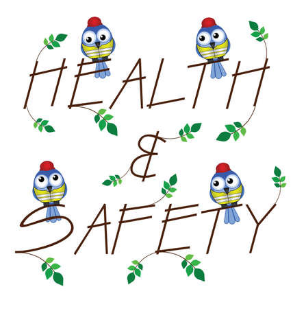 safety vest: Health and Safety twig text isolated on white background