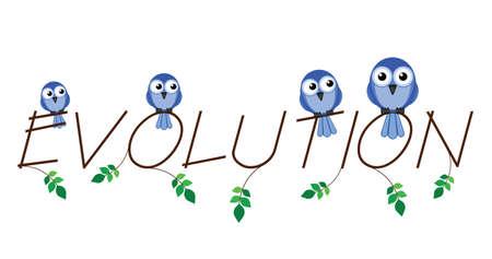 darwinism: Evolution twig text isolated on white background