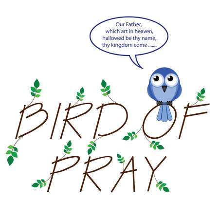 devout: Comical take on bird of pray isolated on white background Illustration