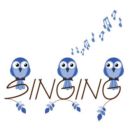 singing bird: Singing twig text isolated on white background Illustration