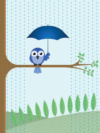 비에서 그늘을 만들죠 버드 나무 가지에 앉아