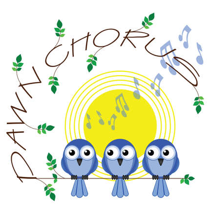 Dawn chorus twig text isolated on white background Stock Vector - 14356059