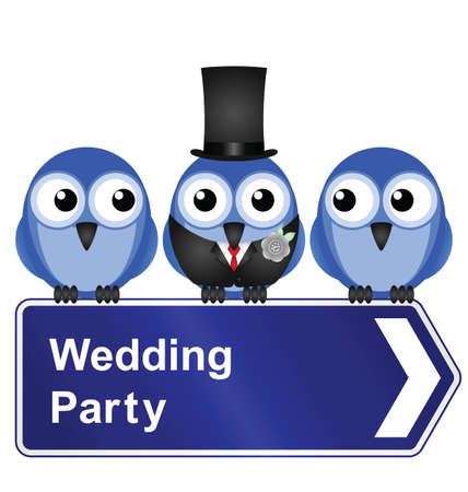 wedding vows: Comical wedding party sign isolated on white background Illustration