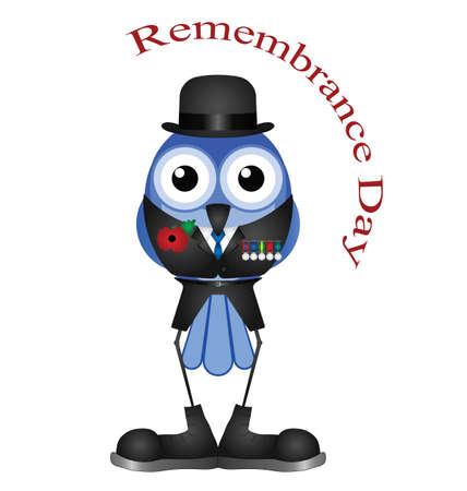 remembrance day: Giorno serviceman ricordo isolato su sfondo bianco