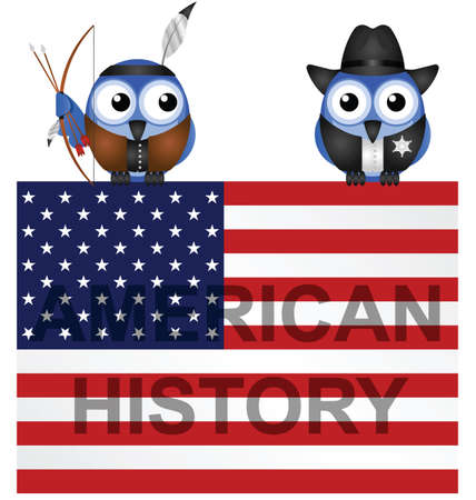 american history: American History Flag isolated on white background