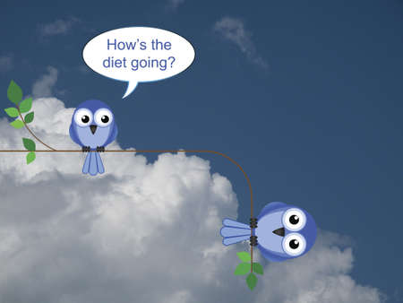 tubby: Fat bird on an unsuccessful diet against a cloudy blue sky