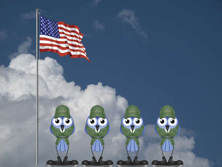infantryman: USA soldiers on parade ground against a cloudy blue sky