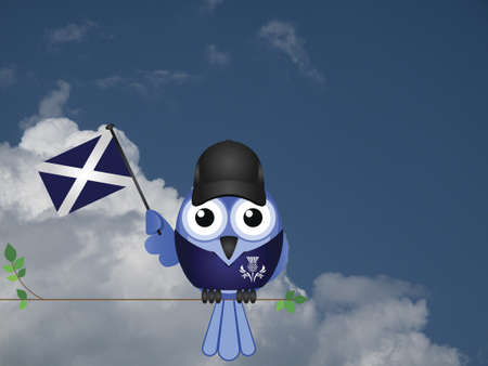 compatriot: Comical Scottish flag waving bird Patriot sat on a tree branch against a cloudy blue sky Stock Photo