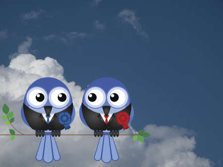 mp: Comical politician birds sat on a tree branch against a cloudy blue sky Stock Photo