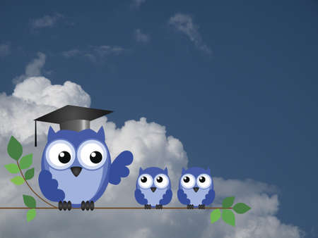 Teacher owl and pupils sat on a tree branch against a cloudy blue sky