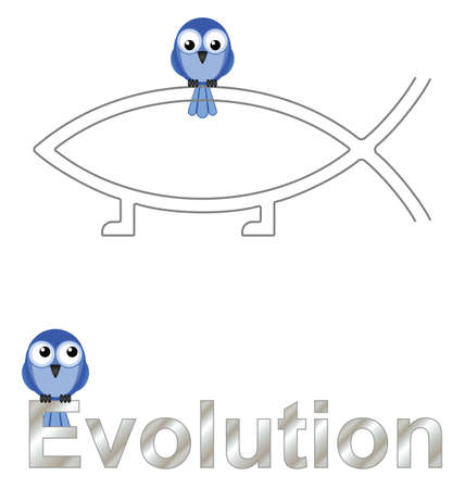 darwinism: Evolution text and birds isolated on white background