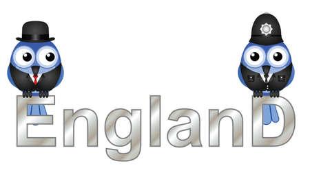 inhabitants: Inghilterra Testo abitanti di uccelli isolato su sfondo bianco Vettoriali