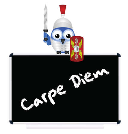 seize: Blackboard with Latin Seize the Day message isolated on white background