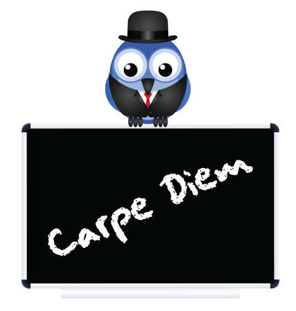 carpe diem: Blackboard with Latin Seize the Day message isolated on white background