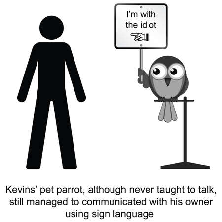 uncouth: Kevin and his pet parrot cartoon isolated on white background