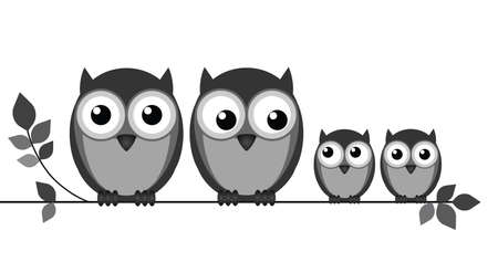 owl isolated: Owl family on branch isolated on white  Illustration