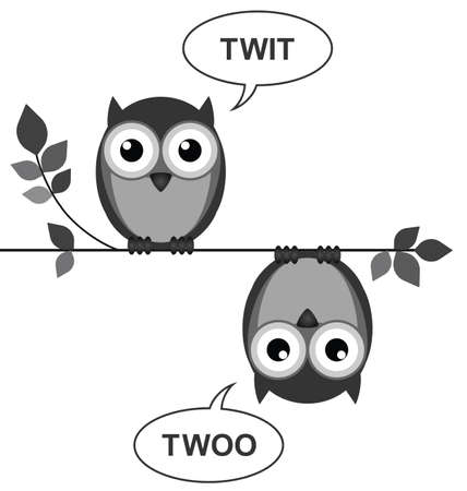 roost: Owls calling to each other sat on a branch isolated on white  Illustration