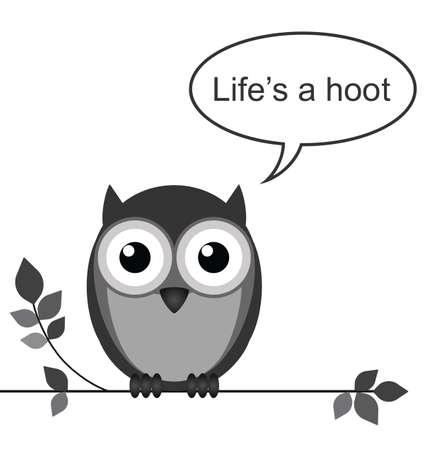 Life is a hoot owl message isolated on white background