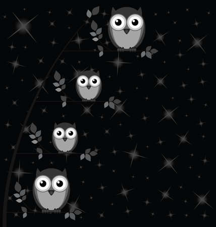 strigiformes: Owl family against a starry black night sky