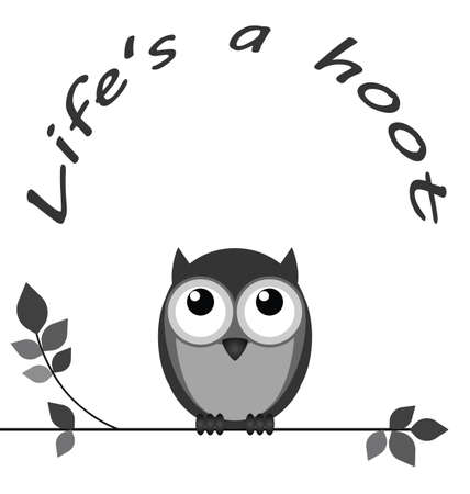 hoot: Life is a hoot owl message isolated on white background