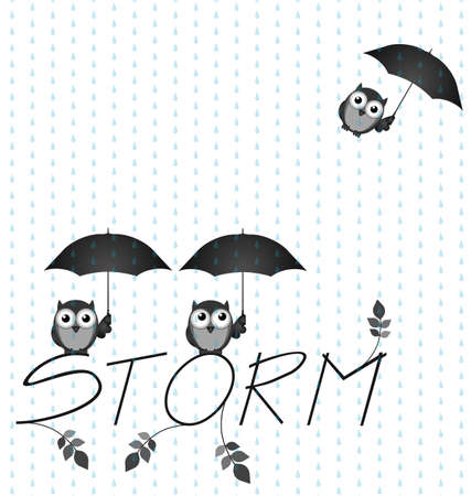 drizzle: Monochrome Owl storm twig text isolated on white background