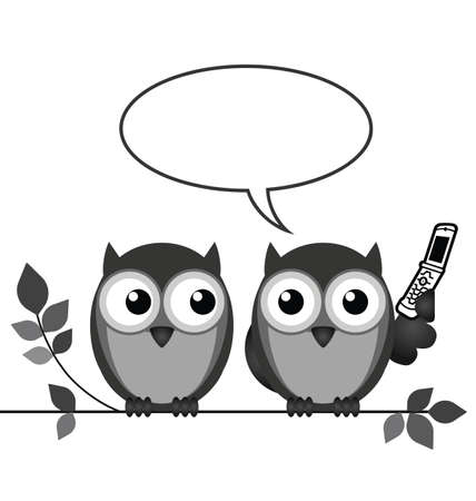 strigiformes: Monochrome owl on mobile phone with copy space for own text isolated on white background