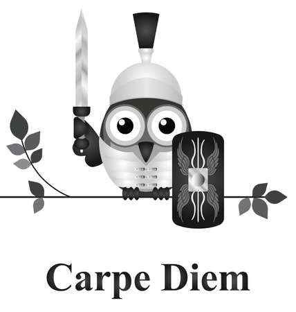 seize: Latin Seize the Day message isolated on white background