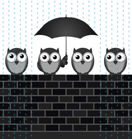 animal shelter: Monochrome comical birds sheltering from the rain sat on a brick wall Illustration