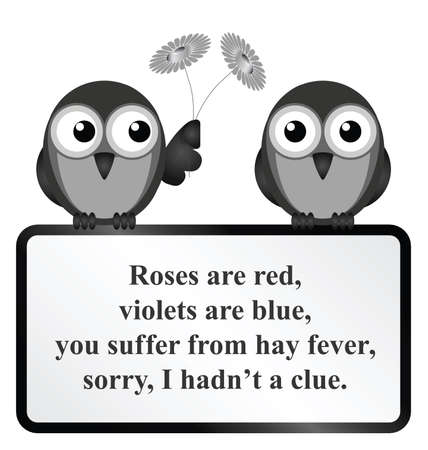 hay fever: Monochrome comical Hay Fever poem isolated on white background Illustration