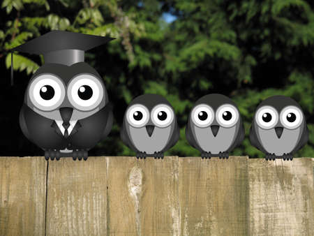 roost: Comical teacher and student birds perched on a timber garden fence against a foliage background