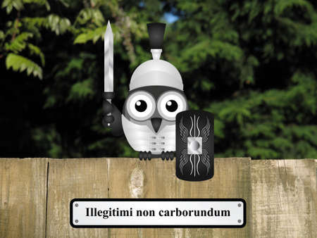 them: Comical Roman soldier bird with Latin do not let them grind you down message perched on a timber garden fence against a foliage background