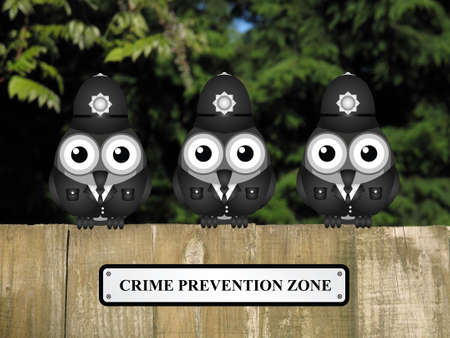 lawman: Comical British bird policemen with crime prevention zone sign perched on a timber garden fence against a foliage background