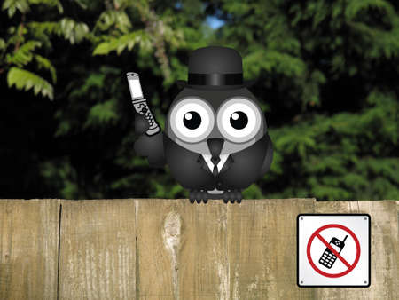 comical: Comical bird using his mobile phone in a restricted area perched on a timber garden fence against a foliage background