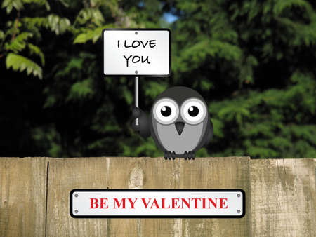 struck: Comical love struck bird with I love you and be my valentine sign perched on a timber garden fence against a foliage background