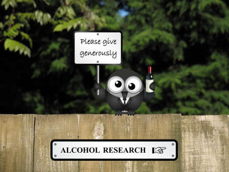 inebriated: Comical drunk bird with alcohol research sign perched on a timber garden fence against a foliage background