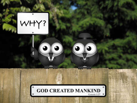 clergy: God created mankind with bird asking why and vicar looking on perched on a timber garden fence against a foliage background Stock Photo