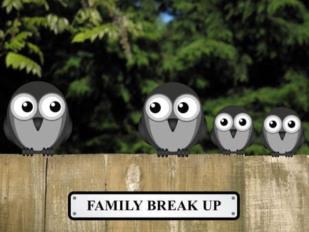 split up: Representation of family break up or divorce with birds perched on a timber garden fence against a foliage background