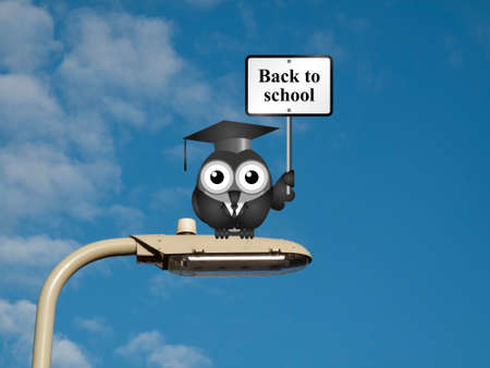 instruct: Comical bird teacher with back to school sign sat on a lamp post against a blue sky background Stock Photo