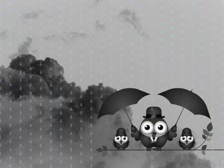 Bird with umbrella sheltering his young from the rain against a dark cloudy skyscape
