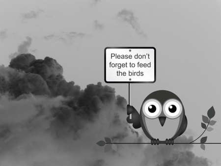 skyscape: Bird with feed the birds sign against a dark cloudy skyscape