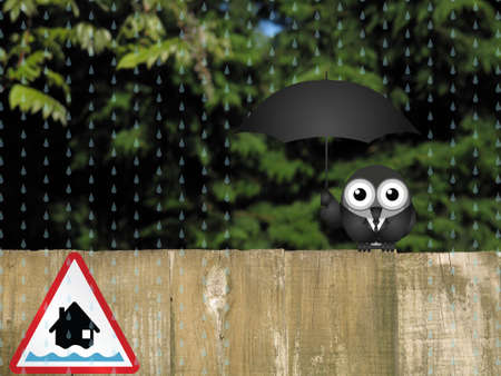Bird sheltering from the rain with amber flood warning sign
