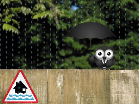 torrent: Bird sheltering from the rain with red flood warning sign