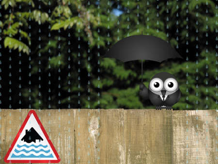 torrent: Bird sheltering from the rain with severe flood warning sign