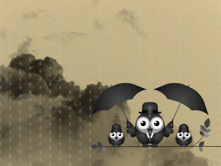 climatic: Bird with umbrella sheltering his young from the rain against a dark cloudy skyscape